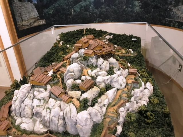 苗木城 (215)