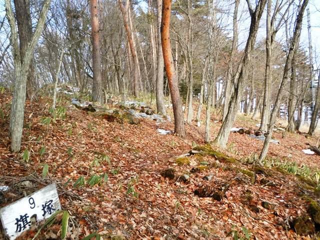 茶臼山陣場 (4)
