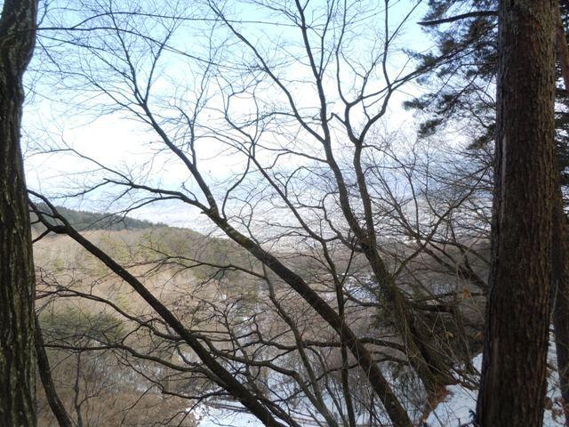 茶臼山陣場 (22)