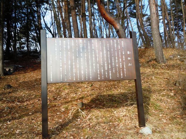 茶臼山陣場 (18)