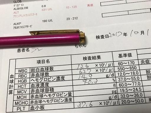 IMG_2451_20171021210301cda.jpg