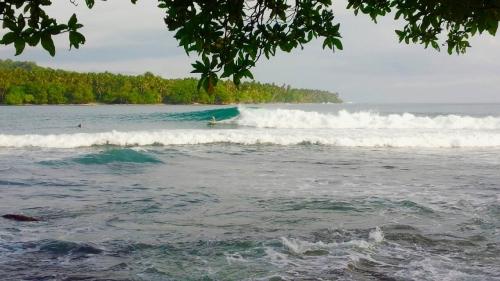 パプアニューギニア_1630