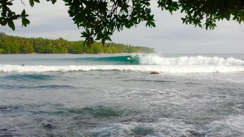 パプアニューギニア_5711