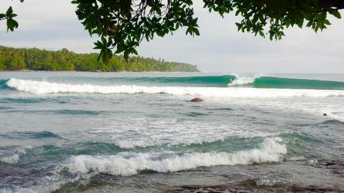 パプアニューギニア_5916