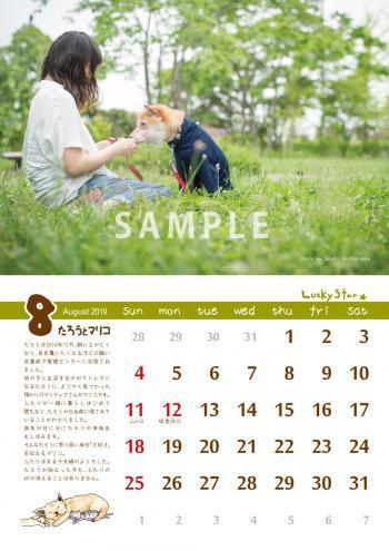 kabekake_sample_B_convert_20181019185801.jpg