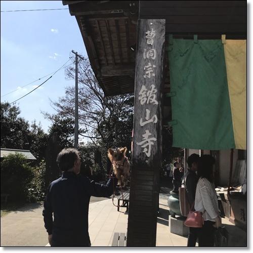 舘山寺IMG_6778-20181020