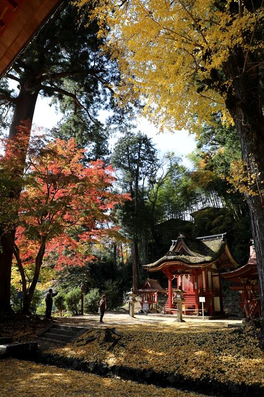 談山神社3171116