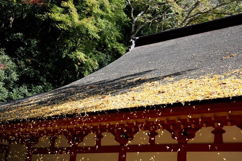 談山神社4171116