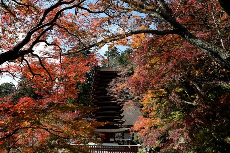 談山神社6171116