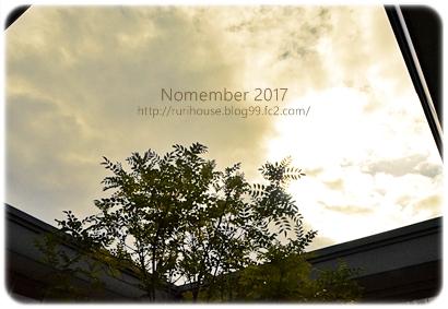 20171127-1.jpg