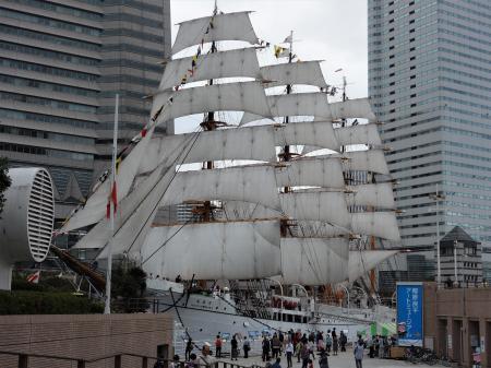 2018 10月8日 横浜メモリアルパーク (5)