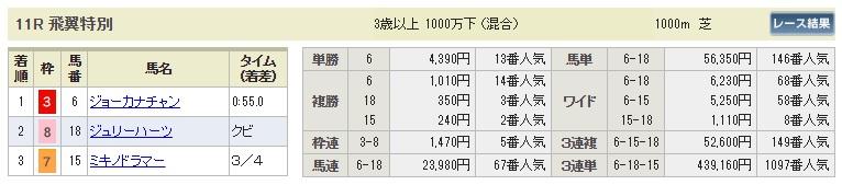 【払戻金】1020新潟11R(長生式馬券スタイル)