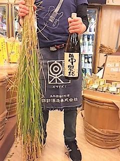 20171028田中農場山田錦
