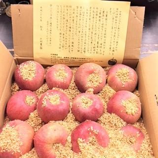 20171129サンふじ