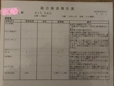 blog12535.jpg
