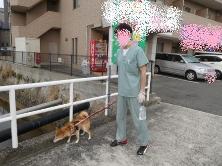 blog12601.jpg