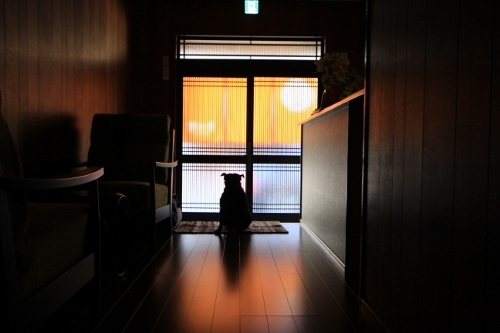0925夏休みの旅行_1