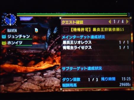 DSC00080_R.jpg