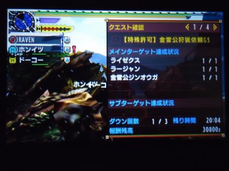 DSC00088_R.jpg