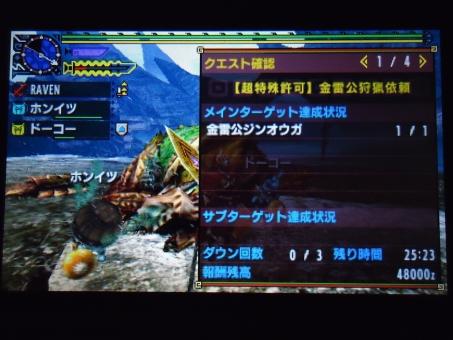 DSC00093_R.jpg
