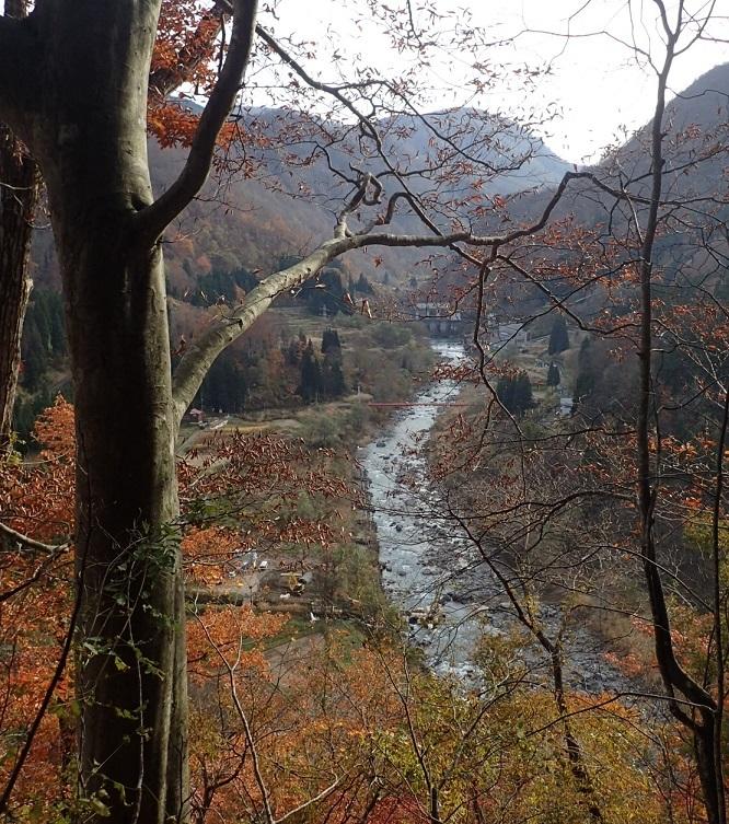 穴藤のつり橋とダム