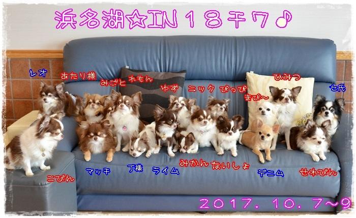 DSC_4791_20171009205229508.jpg