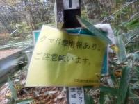 00-03-jouhou.jpg