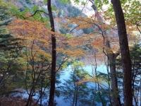 01-11-kouoyou-4.jpg