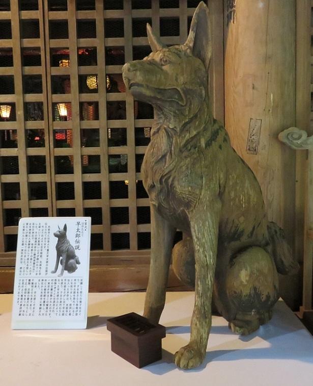 光前寺 早太郎像