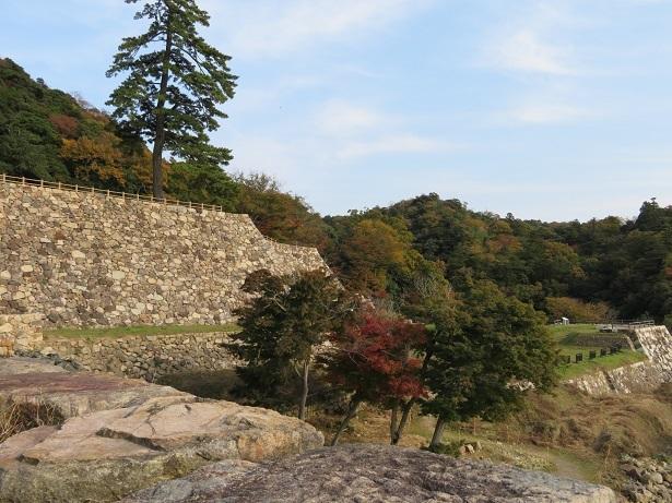 鳥取城 菱櫓跡から天球丸跡の石垣を見る