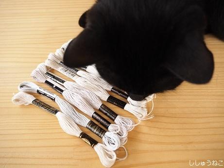 刺繍糸と黒猫
