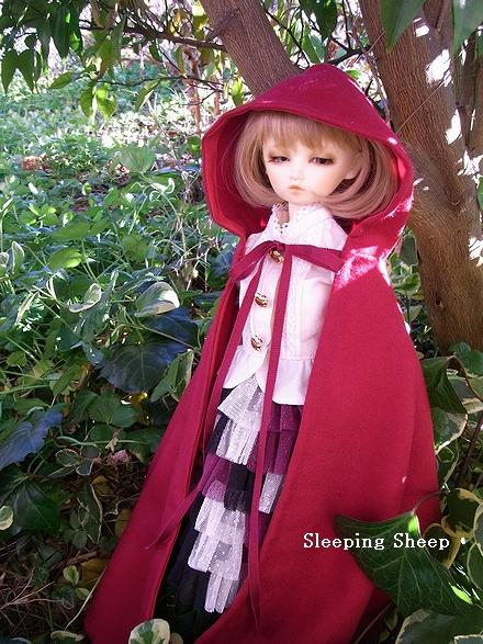 RIMG2754-2迷夢