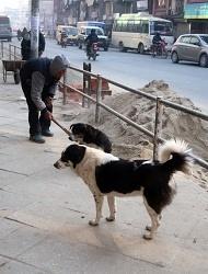 nepal3-7.jpg