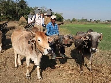 nepal5-10.jpg
