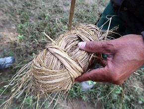 nepal5-9.jpg