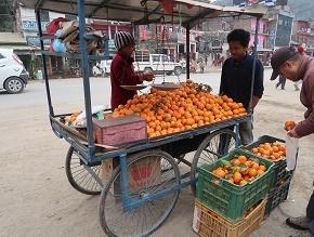 nepal6-2.jpg