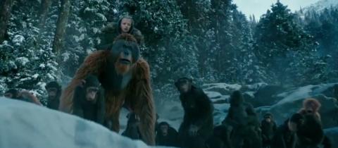 キャラクター設定が際立つ「猿の惑星:聖戦記」