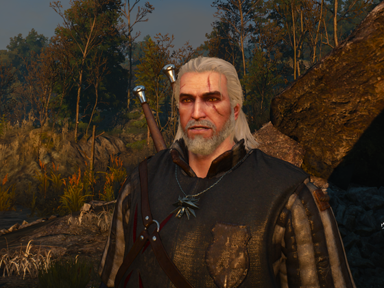the_witcher_3_6.png