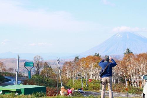 山を撮るオジサンと柴犬その①