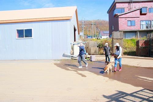 ニンジン倉庫