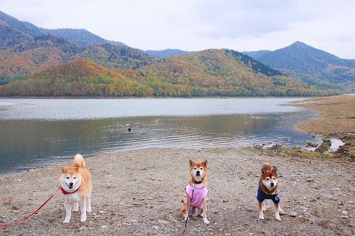 かなやま湖