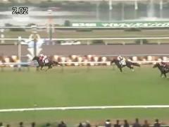 20171118 京都8R (1000) トリオンフ 01