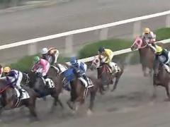 20171130 園田3R C3牝馬 クイーンオブハート 01
