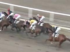 20171130 園田3R C3牝馬 クイーンオブハート 02