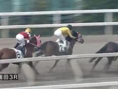 20171130 園田3R C3牝馬 クイーンオブハート 03