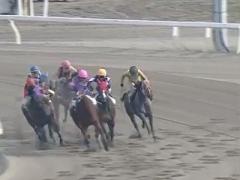 20171130 園田3R C3牝馬 クイーンオブハート 05