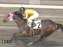20171130 園田3R C3牝馬 クイーンオブハート 08