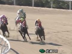 20171202 佐賀1R C2 ジュンマシュウ 05