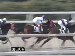 20171221 園田6R C2 プンメリン 02