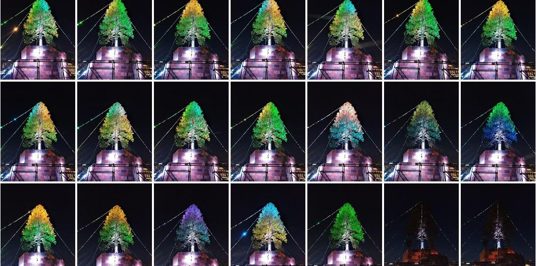 クリスマスツリー2017in KOBE
